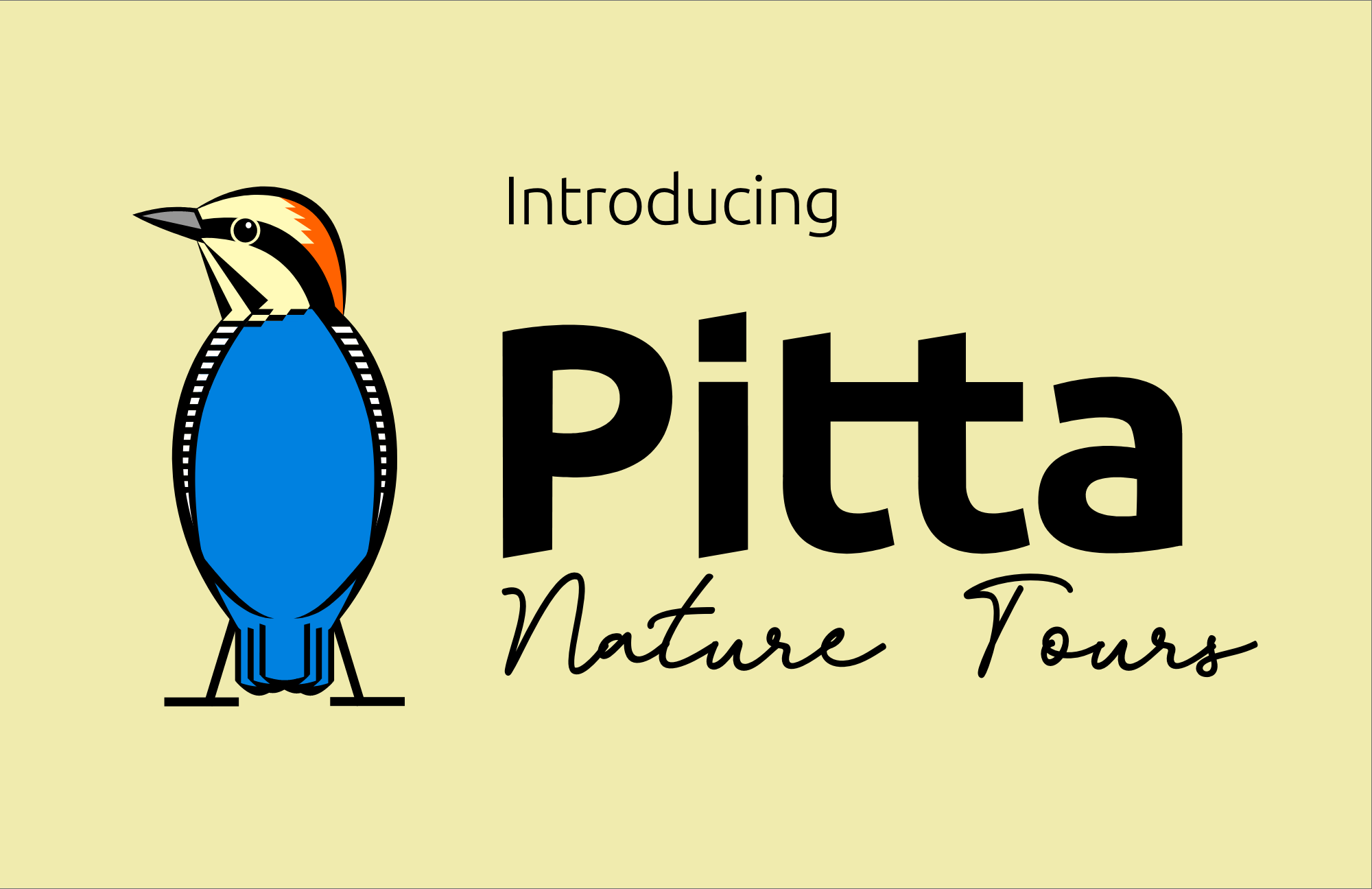 Mountain West Birding Company is now Pitta Tours